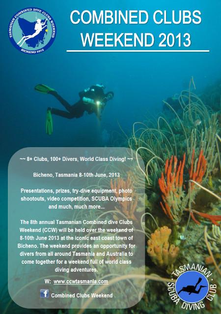 CCW 2013 flyer